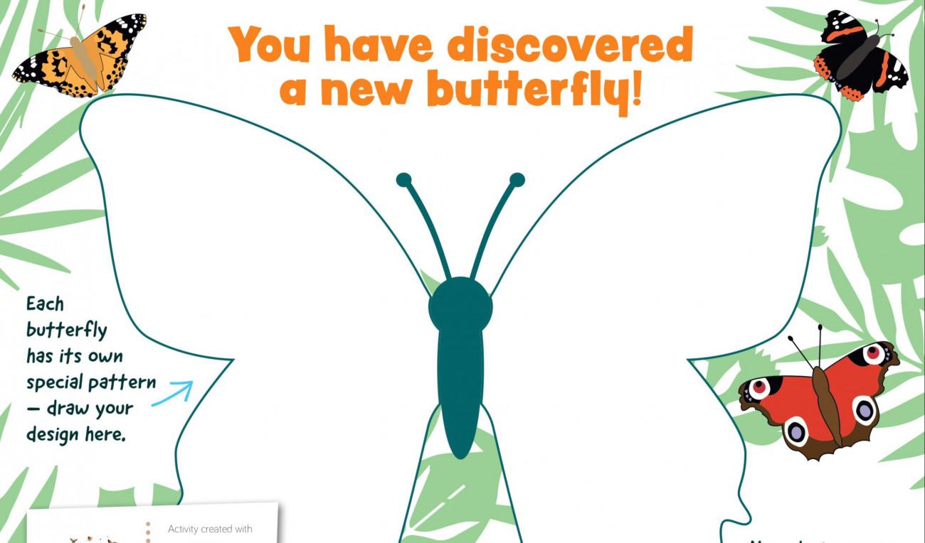 Design a Butterfly